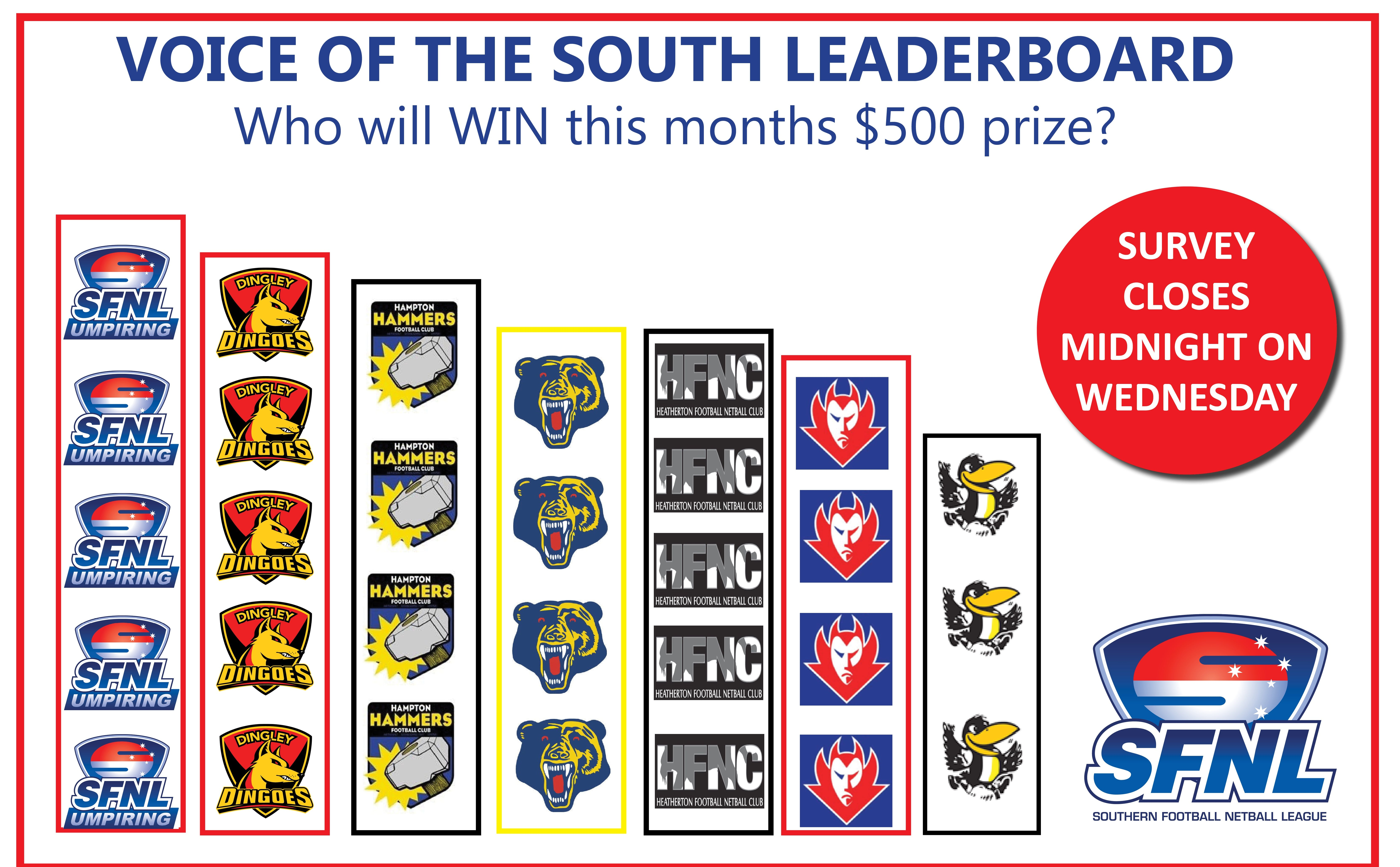 Voice of the South Leaderboard